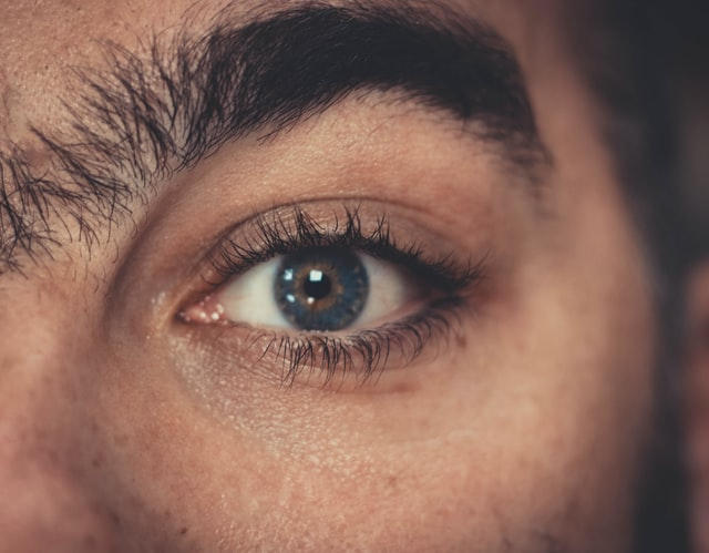 How to make eyebrows?